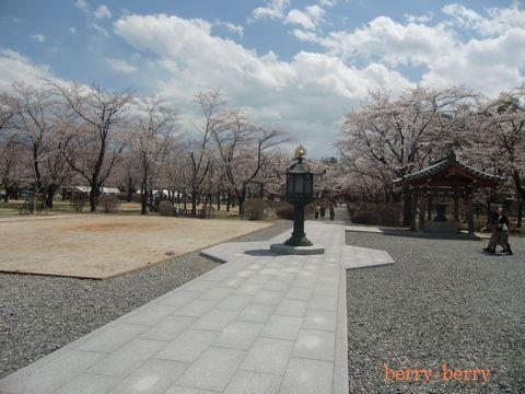 2011.5.8 聖光寺4.jpg